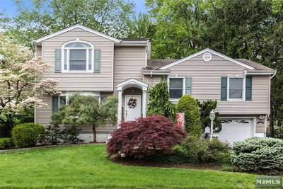 New Milford Single Family Home For Sale: 316 Shea Drive