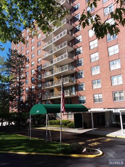 Hackensack Condo/Townhouse For Sale: 301 Beech Street #11-I