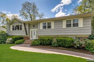 Morris County Single Family Home For Sale: 12 Kearney Avenue