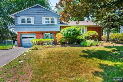 Demarest Single Family Home For Sale: 73 Hardenburgh Avenue