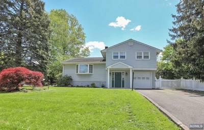 Passaic County Single Family Home For Sale: 366 Ratzer Road