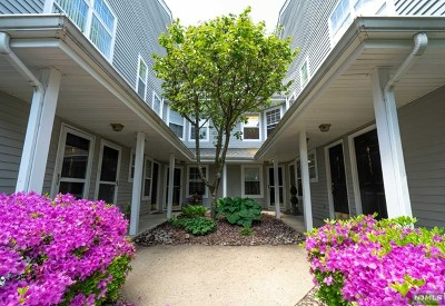 Mahwah Condo/Townhouse For Sale: 1233 Richmond Road