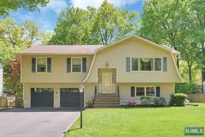 Waldwick Single Family Home For Sale: 108 Dora Avenue