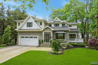 Tenafly Single Family Home For Sale: 11 Grandview Terrace