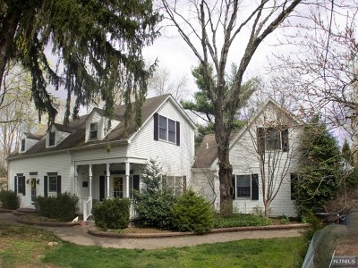Upper Saddle River Single Family Home For Sale: 29 Weiss Road