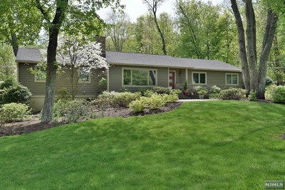 Saddle River Single Family Home For Sale: 24 Dater Lane