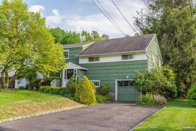 Essex County Single Family Home For Sale: 47 Grissing Court