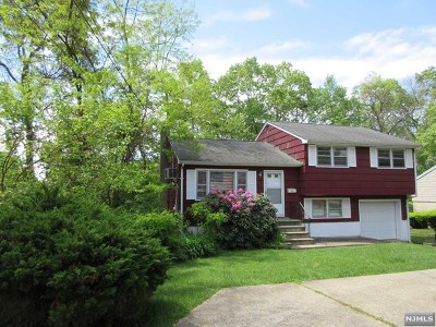 Bloomingdale Single Family Home For Sale: 74 Knolls Road