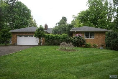 Passaic County Single Family Home For Sale: 356 Manchester Avenue