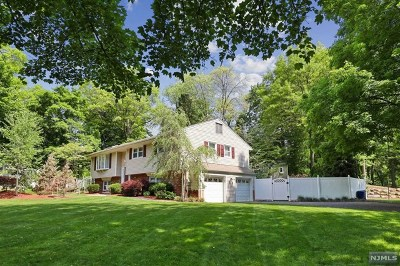 Hillsdale Single Family Home For Sale: 128 Queen Court