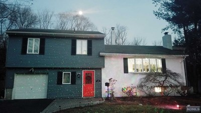 Cresskill NJ Single Family Home For Sale: $840,000