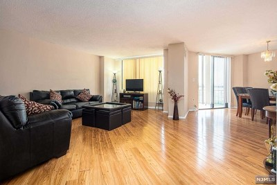 Hudson County Condo/Townhouse For Sale: 806 Harmon Cove Tower