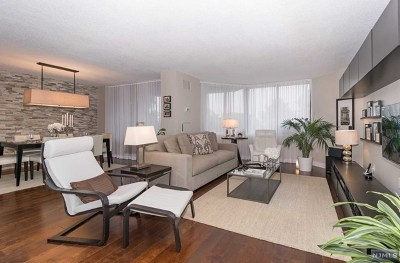 Hudson County Condo/Townhouse For Sale: 107 Harmon Cove Tower #107