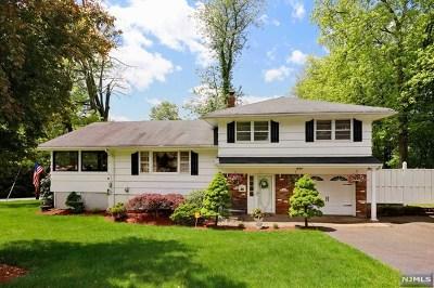 Montvale Single Family Home For Sale: 14 Magnolia Avenue