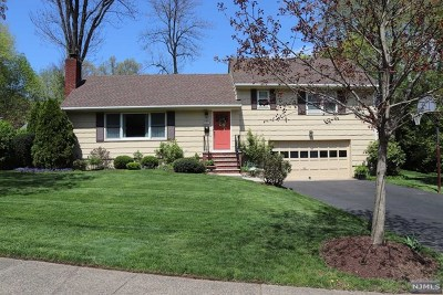 Ridgewood Single Family Home For Sale: 423 Colwell Court
