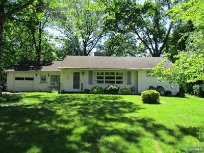 Passaic County Single Family Home For Sale: 13 Lucas Lane