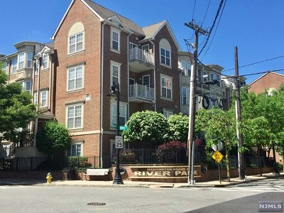 Hudson County Condo/Townhouse For Sale: 201 Dey Street #179