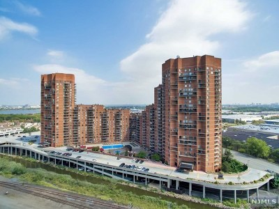 Hudson County Condo/Townhouse For Sale: 327 Harmon Cove Tower #327