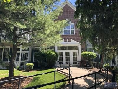 Passaic County Condo/Townhouse For Sale: 1310 Four Seasons Drive