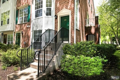 Bergen County Condo/Townhouse For Sale: 289 Larch Lane