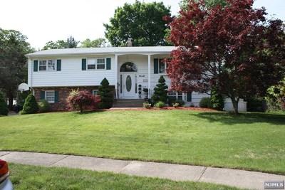 Passaic County Single Family Home For Sale: 12 McKernan Court