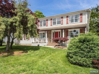 Passaic County Single Family Home For Sale: 87 Point View Parkway