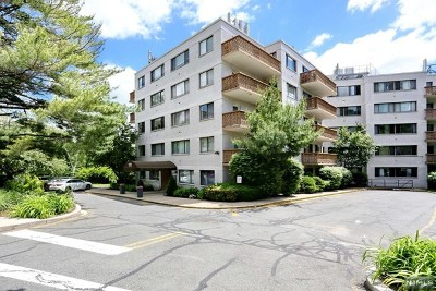 Edgewater Condo/Townhouse For Sale: 1375 River Road #Lg