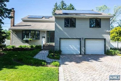New Milford Single Family Home For Sale: 319 Webster Drive