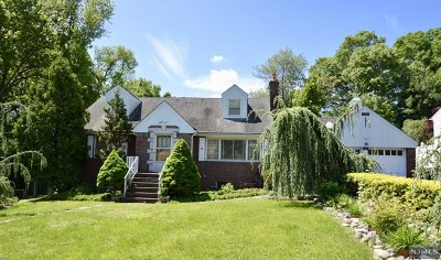 Emerson NJ Single Family Home For Sale: $375,000