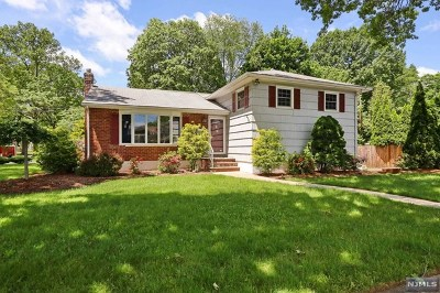 Oradell Single Family Home For Sale: 276 Beechwood Road