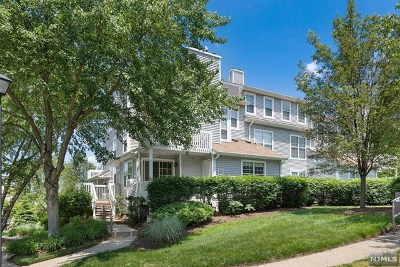 Englewood Condo/Townhouse For Sale: 6 Squire Court