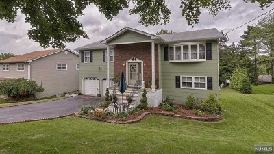 Wanaque Single Family Home For Sale: 29 Schirra Drive