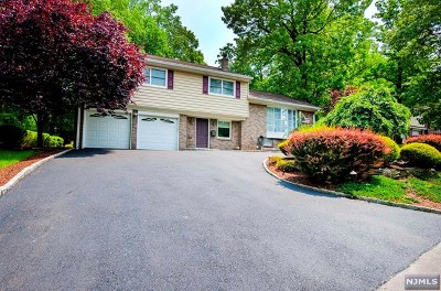 Leonia Single Family Home For Sale: 569 Nordhoff Drive