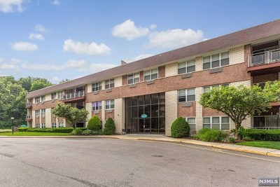 Edgewater NJ Condo/Townhouse For Sale: $242,000