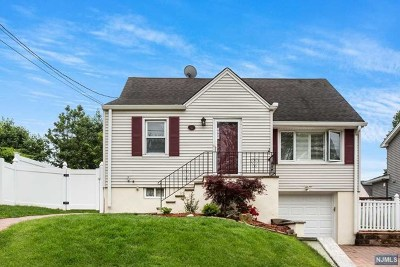 Woodland Park Single Family Home For Sale: 44 Brookview Drive