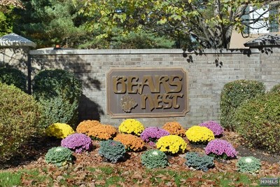 Park Ridge Condo/Townhouse For Sale: 319 Forester Way