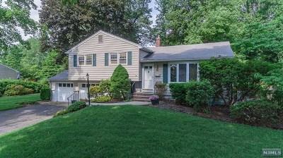 Park Ridge Single Family Home For Sale: 8 West Pine Drive