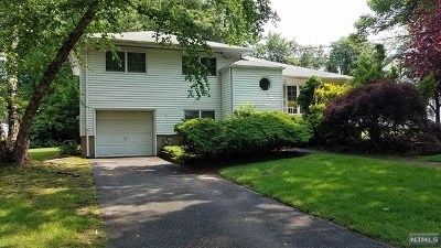Paramus Single Family Home For Sale: 120 Maitland Avenue
