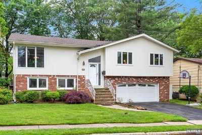 Englewood Cliffs Single Family Home For Sale: 34 West Bayview Avenue