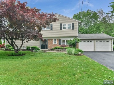 Paramus Single Family Home For Sale: 267 Midwood Road