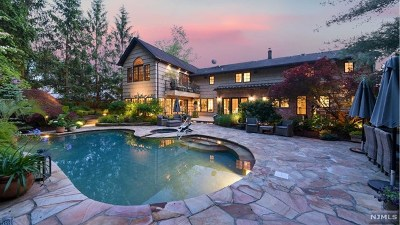 Passaic County Single Family Home For Sale: 33 Divan Way