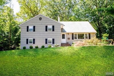 Park Ridge Single Family Home For Sale: 21 Mountain Avenue
