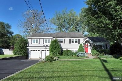 Waldwick Single Family Home For Sale: 102 Longview Drive