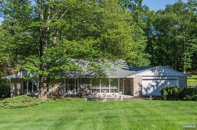 Woodland Park Single Family Home For Sale: 467 Rifle Camp Road