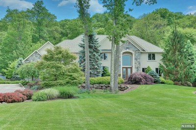 Ringwood Single Family Home For Sale: 2 Briscoe Chase
