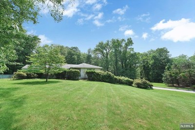 Saddle River Single Family Home For Sale: 10 Deertrail Road