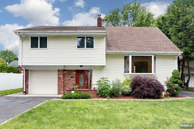 Oradell Single Family Home For Sale: 379 Grant Avenue
