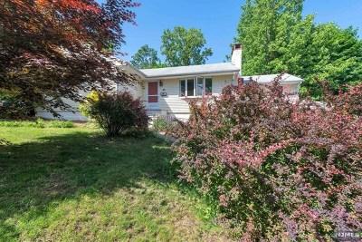 Park Ridge Single Family Home For Sale: 90 Fremont Avenue