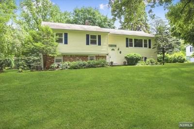 Morris Plains Boroug Single Family Home For Sale: 2 Greenwood Road