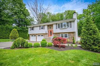 Montvale Single Family Home For Sale: 27 Ladik Place